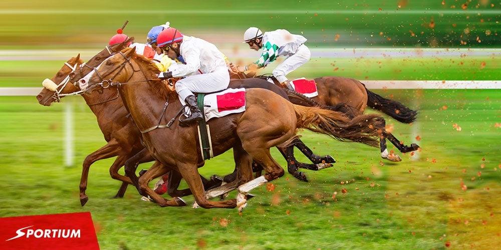 Apuestas de ganador y colocado en caballos: Qué son y mejores tips